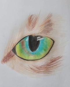 Jůlie Saláková- Vlčí oko